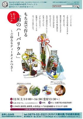 12月遊学のススメ のコピー.jpg
