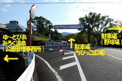 DSC_1103_ES.jpg