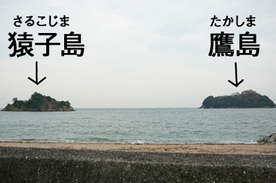 猿子島鷹島.jpg