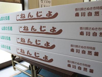 IMG_5073-75abf-thumbnail2.jpg