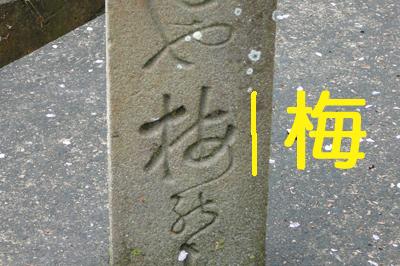 P1340836 のコピー.jpg